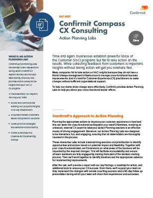 Confirmit's Customer Experience (CX) Consulting fact sheet