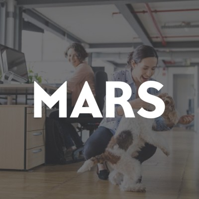 Mars saw an opportunity to place a focus on building talent within the company instead of hiring talent externally.